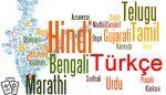 Hintçe'de Sık Kullanılan Kelime ve Cümleler